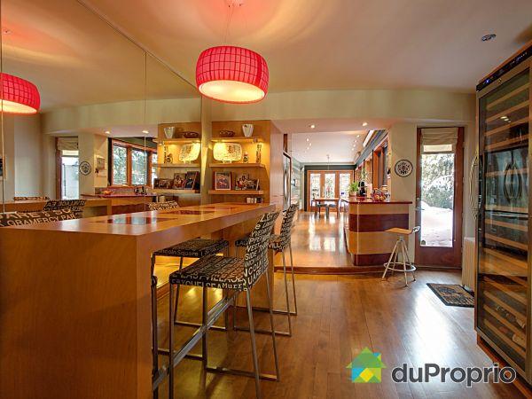 Open Concept - 4597 rue Fabre, Le Plateau-Mont-Royal for sale