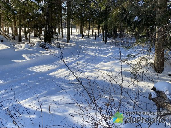 Woods - 942 rue Beauchamps, Thetford Mines for sale