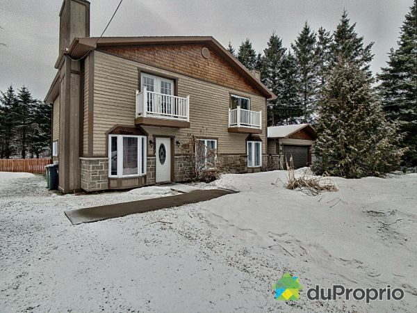Outside - 91-93, avenue Louise, St-Sauveur for sale