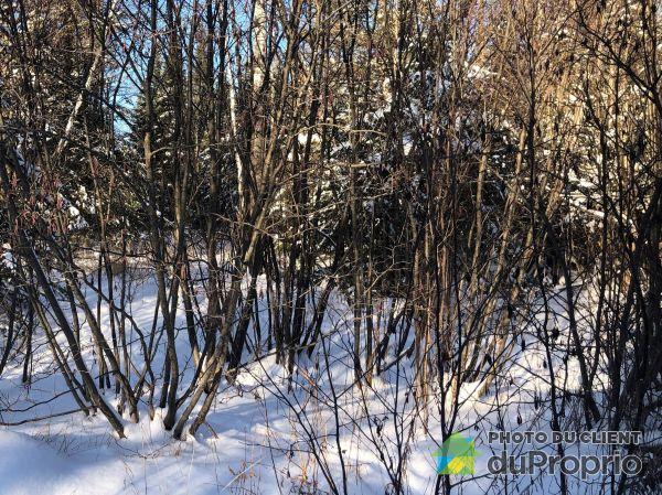 Woods - rue Pimbina, Sherbrooke (St-Élie-d'Orford) for sale