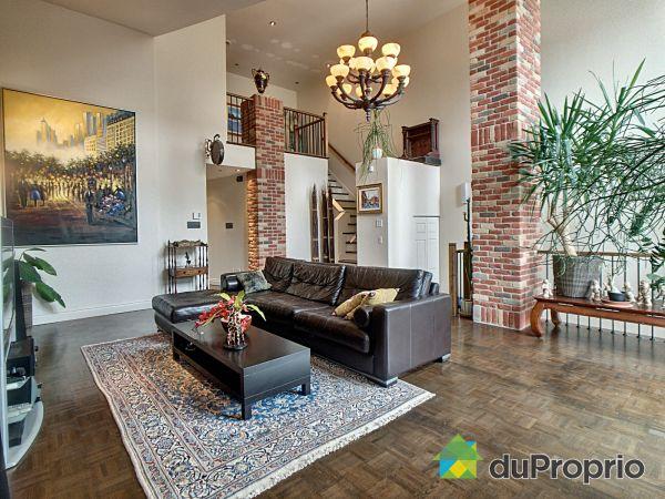 Living Room - 4563 rue Moïse Picard, Rosemont / La Petite Patrie for sale
