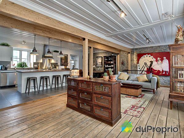 Open Concept - 716 rue de la Salle, Saint-Roch for sale