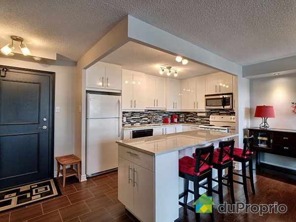 Kitchen - 303-110 rue du Château, Gatineau (Hull) for sale