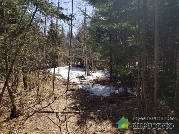 Overall View -  boulevard Malcolm-Fraser, La Malbaie (St-Fidèle) for sale
