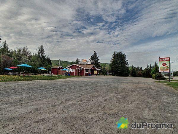 1176, route 117, St-Faustin-Lac-Carré à vendre