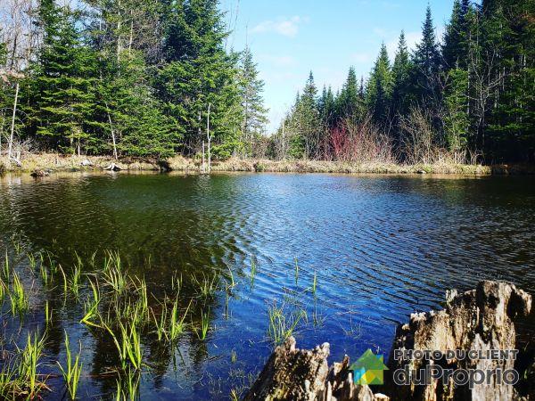 Pond - 230 chemin de la Forêt-Enchantée, Val-Racine for sale