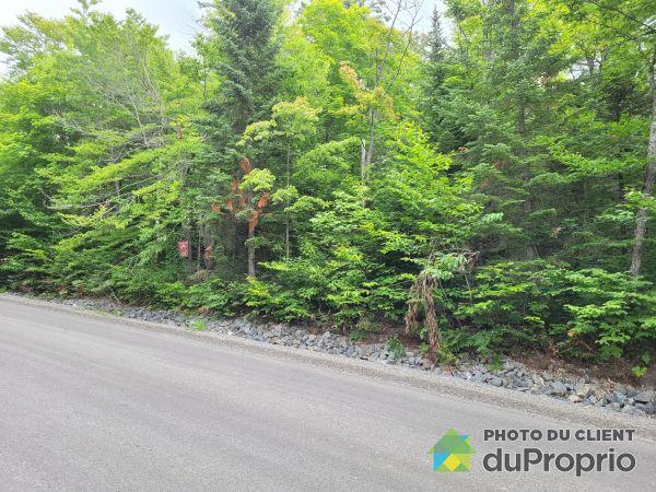 Summer Front -  chemin Marie Reine des Coeurs, Chertsey for sale