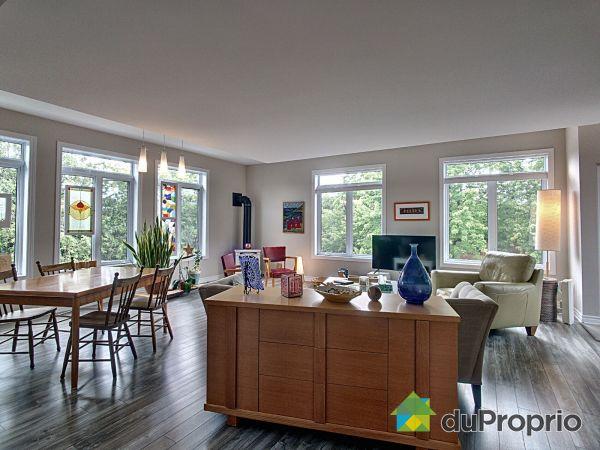 Living Room - B-24 rue Brook, Gatineau (Aylmer) for sale