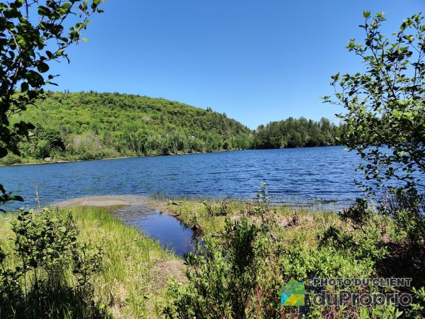 Lac - , promenade Mountview, Otter Lake à vendre