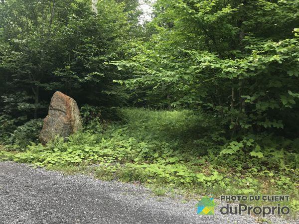 Entrance -  chemin des Montagnes-Vertes, Sutton for sale