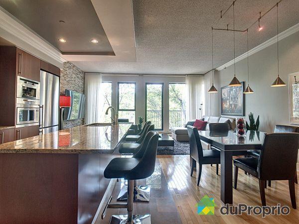 Salle à manger / Cuisine - 407-333, rue Sherbrooke Est, Le Plateau-Mont-Royal à vendre