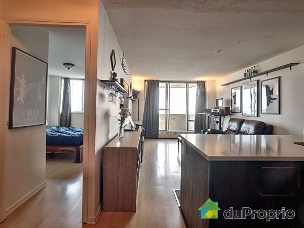 Appartement - 2104-3535, avenue Papineau, Le Plateau-Mont-Royal à vendre