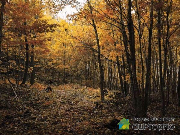chemin George-Bonnallie - Kyo Terra - Pic de l'Ours, Eastman à vendre