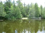 Residential Lot in Orford, Estrie