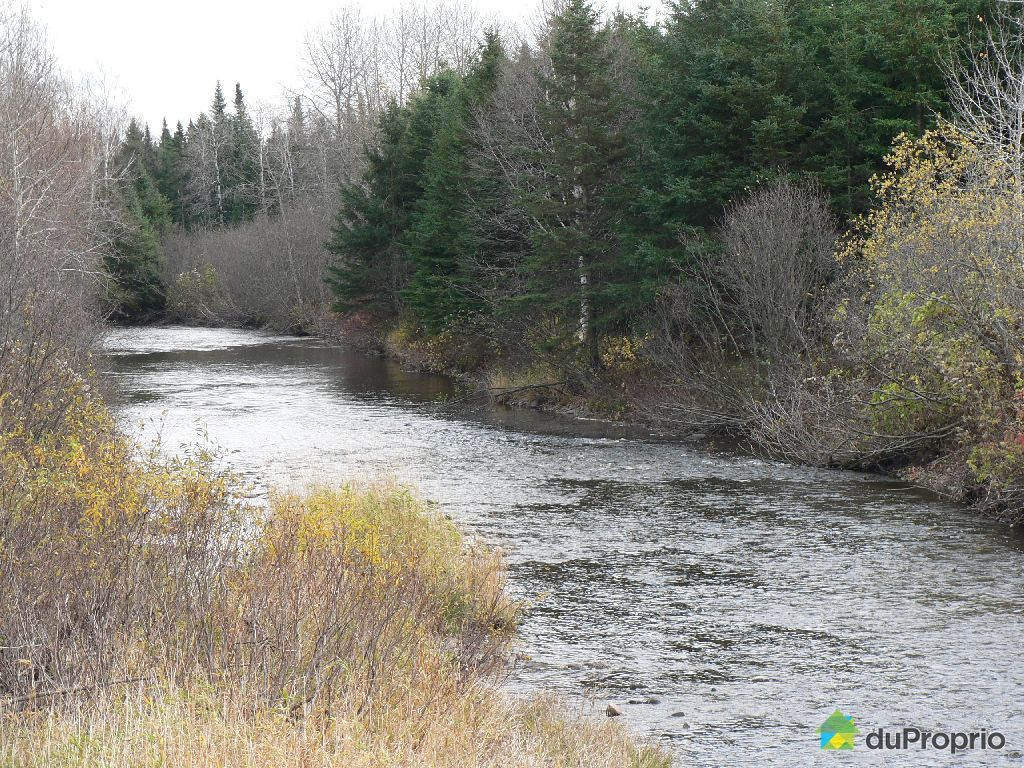 Terreà bois vendu St Magloire De Bellechasse, immobilier Québec DuProprio 46