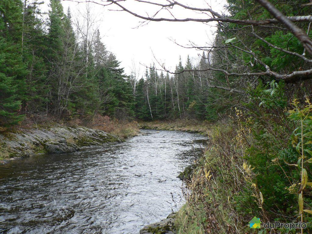 Terreà bois vendu St Magloire De Bellechasse, immobilier Québec DuProprio 465494 # Bois De Chasse A Vendre