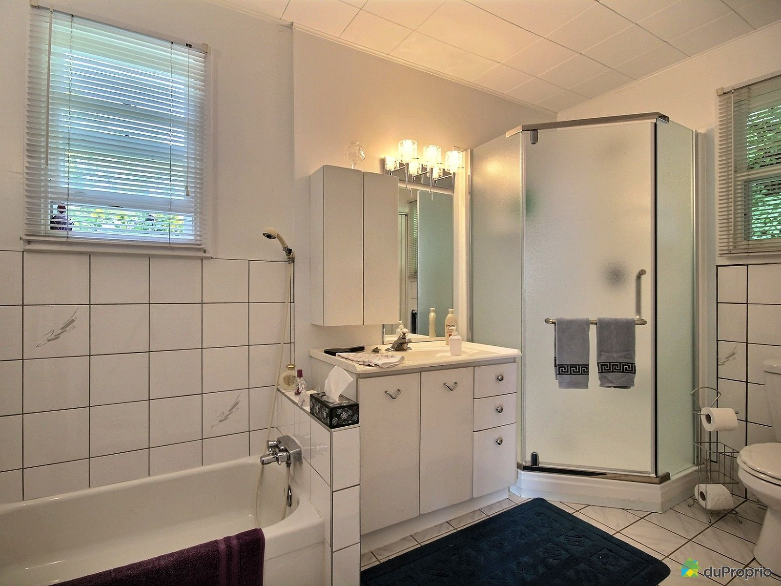 chalet vendre ile d 39 orl ans st laurent 192 c te gosselin immobilier qu bec duproprio 711115. Black Bedroom Furniture Sets. Home Design Ideas