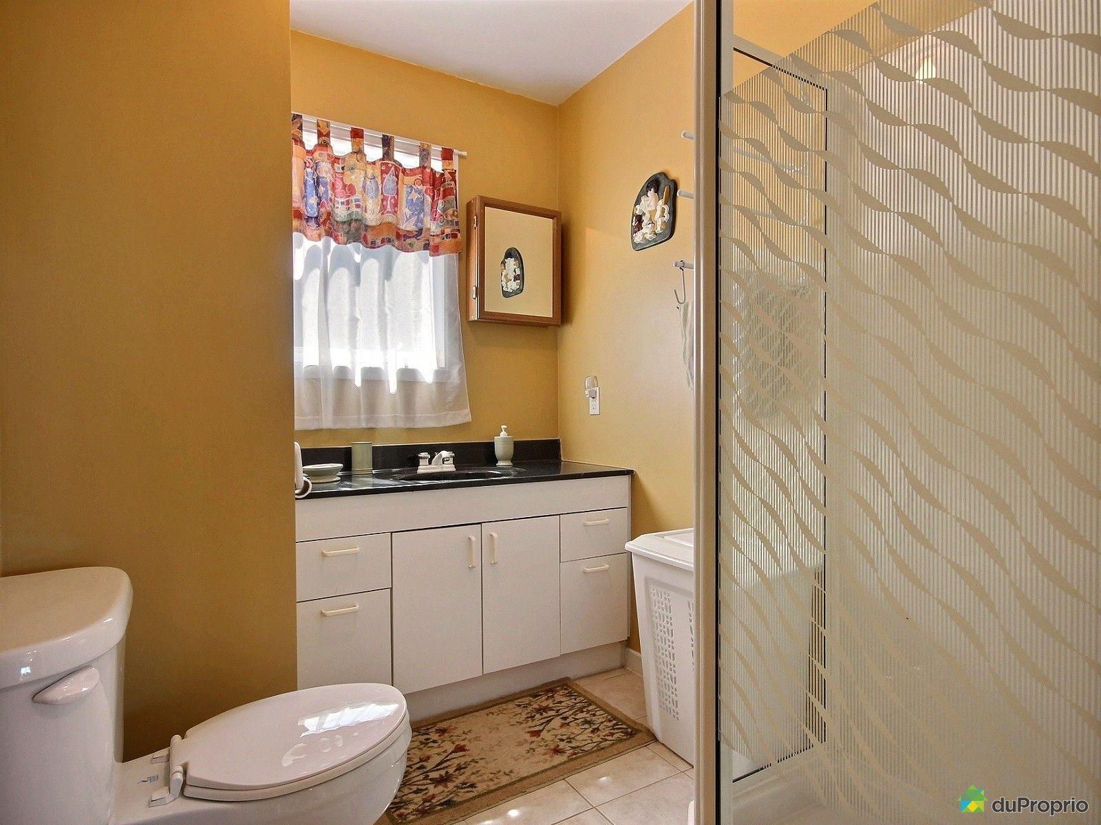 Chalet vendre st denis de la bouteillerie 104 rue for Plomberie salle de bain au sous sol