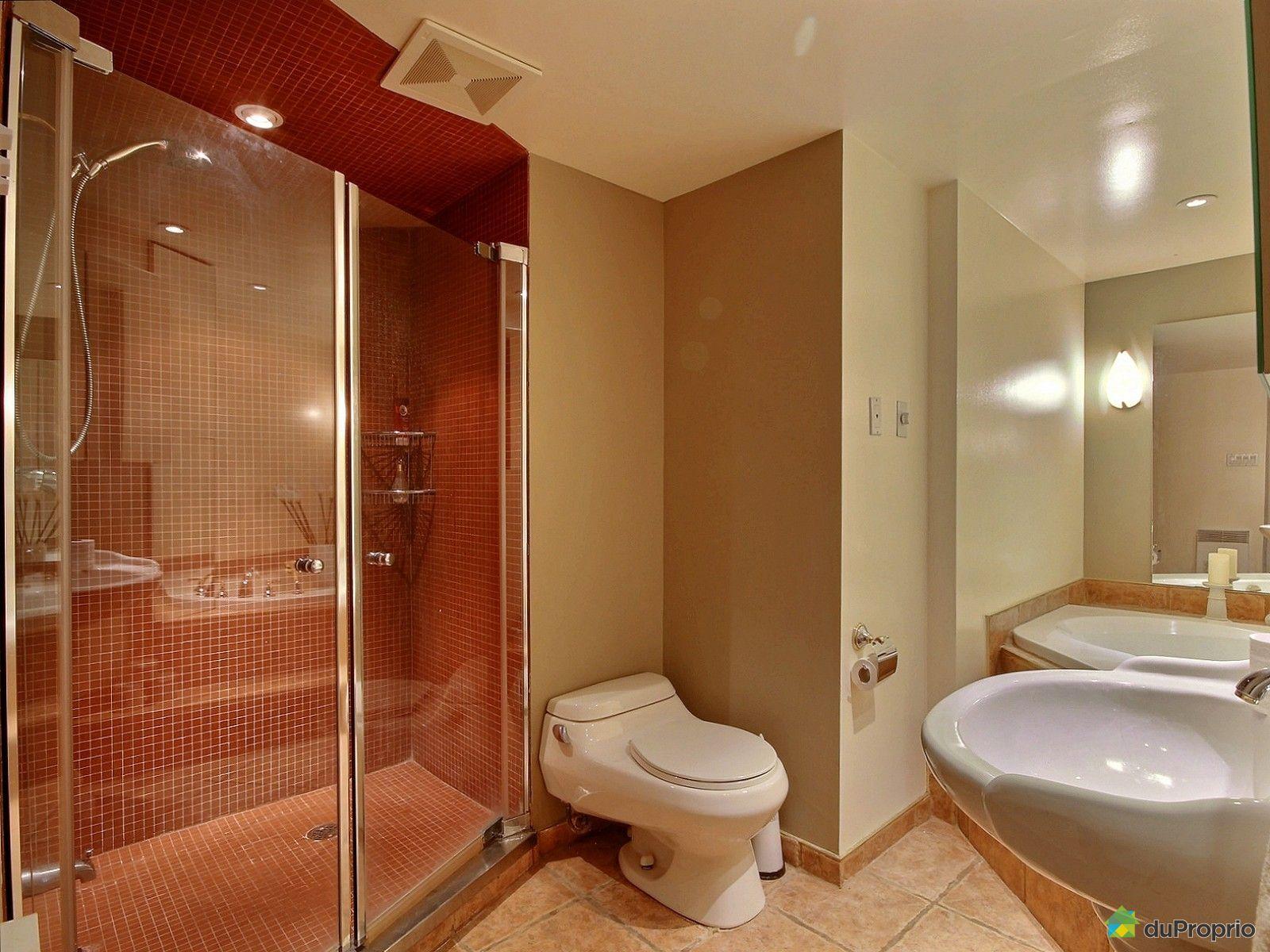 Condo vendre montr al 1115 3535 avenue papineau for Salle de bain royan