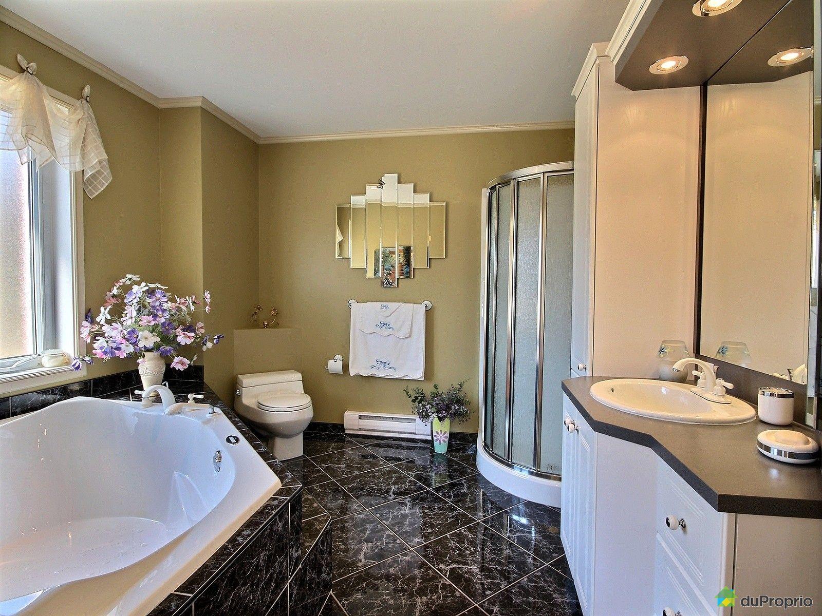 maison vendre cookshire eaton 425 chemin smith immobilier qu bec duproprio 696955. Black Bedroom Furniture Sets. Home Design Ideas