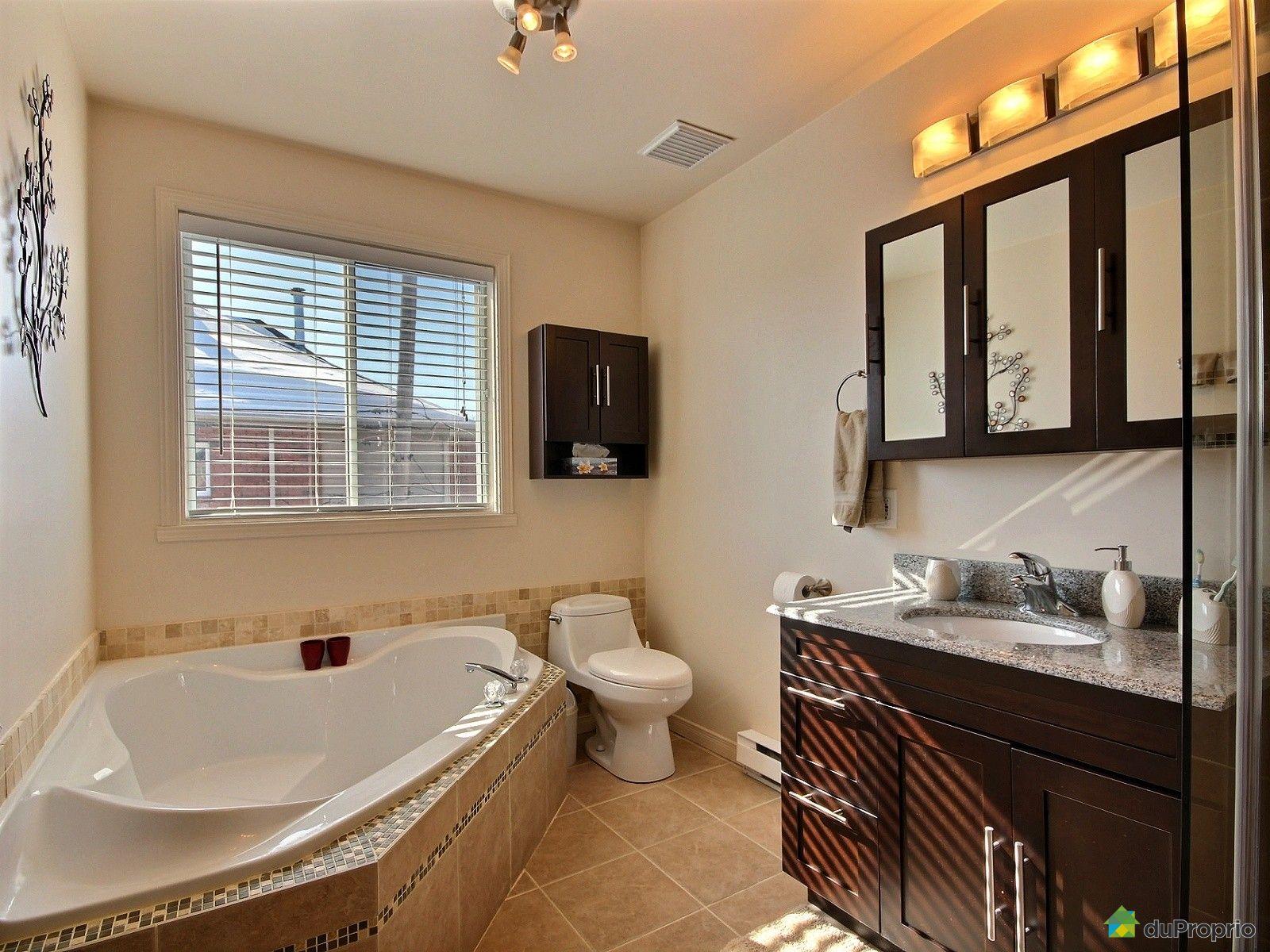 jumel vendu montr al immobilier qu bec duproprio 582245. Black Bedroom Furniture Sets. Home Design Ideas