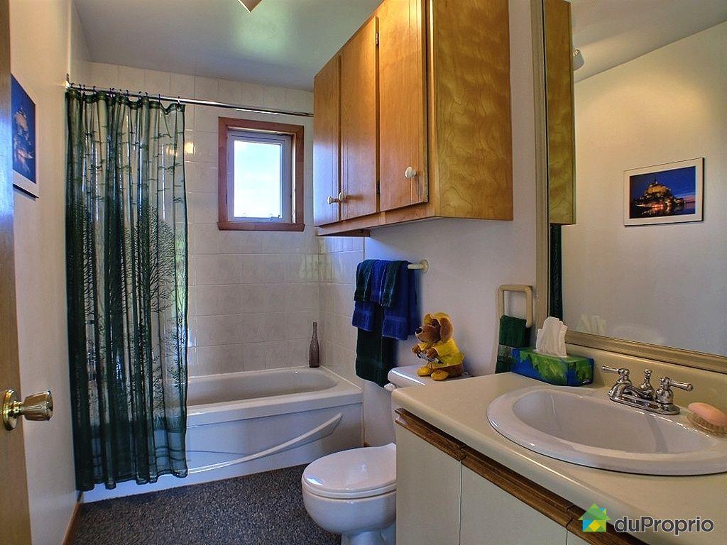 maison vendu ile d 39 orl ans st fran ois immobilier qu bec duproprio 264844. Black Bedroom Furniture Sets. Home Design Ideas