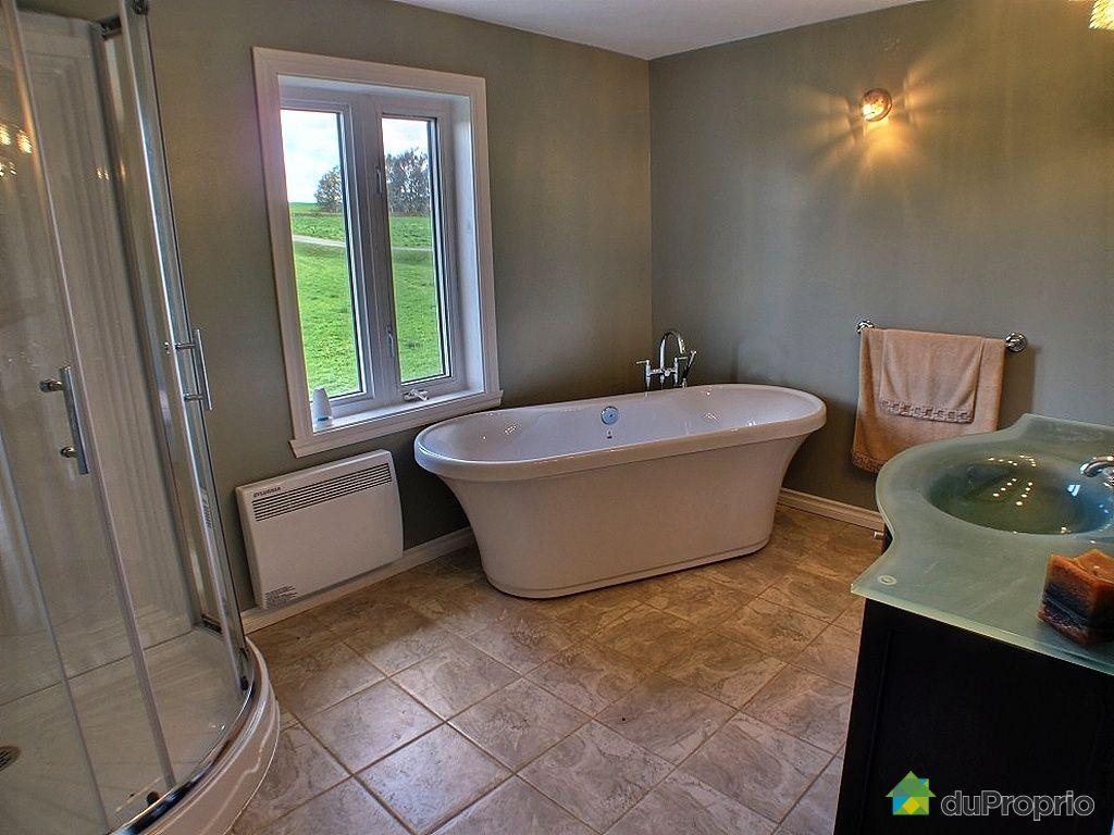 maison vendu ile d 39 orl ans st fran ois immobilier qu bec duproprio 226597. Black Bedroom Furniture Sets. Home Design Ideas
