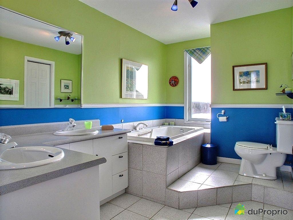 maison vendu ile d 39 orl ans st fran ois immobilier qu bec duproprio 408897. Black Bedroom Furniture Sets. Home Design Ideas