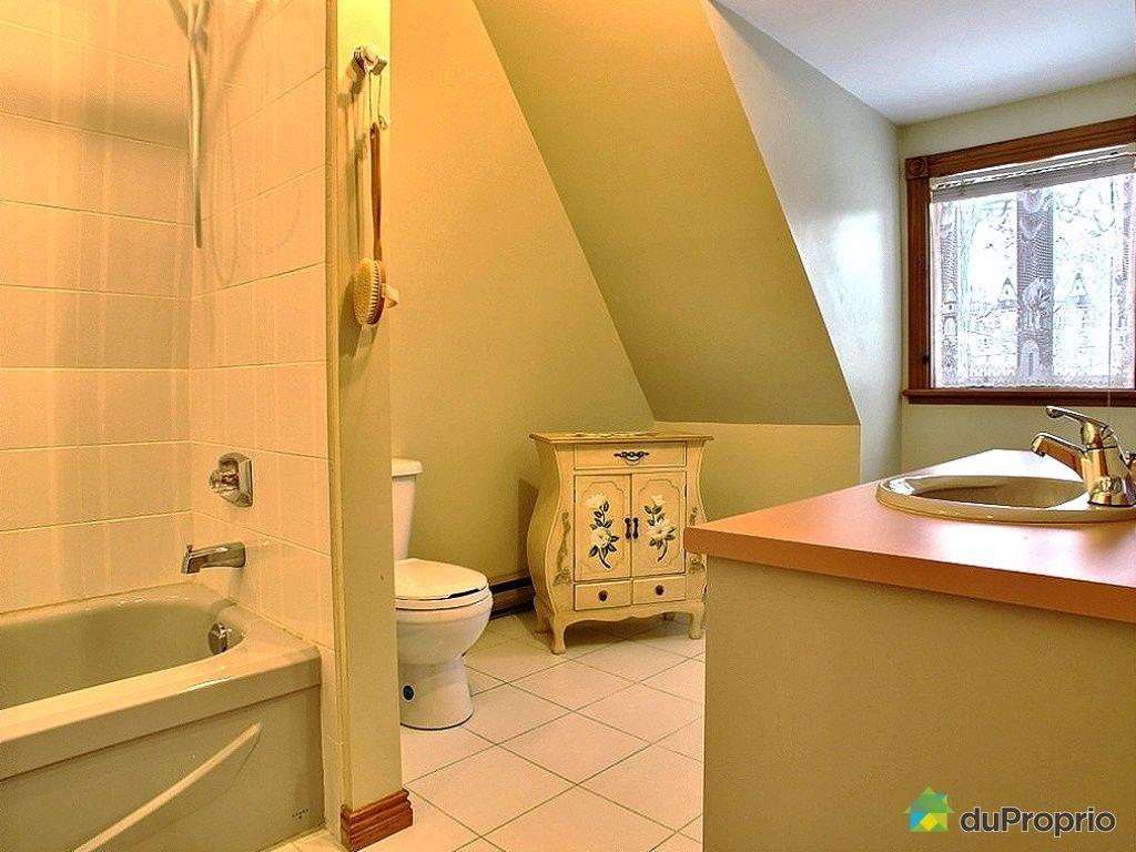 maison vendu ile d 39 orl ans st laurent immobilier qu bec duproprio 370390. Black Bedroom Furniture Sets. Home Design Ideas