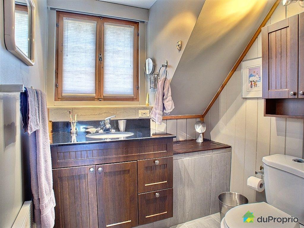 Maison vendre lac ste marie 6 rue sauve immobilier for Bain marie maison