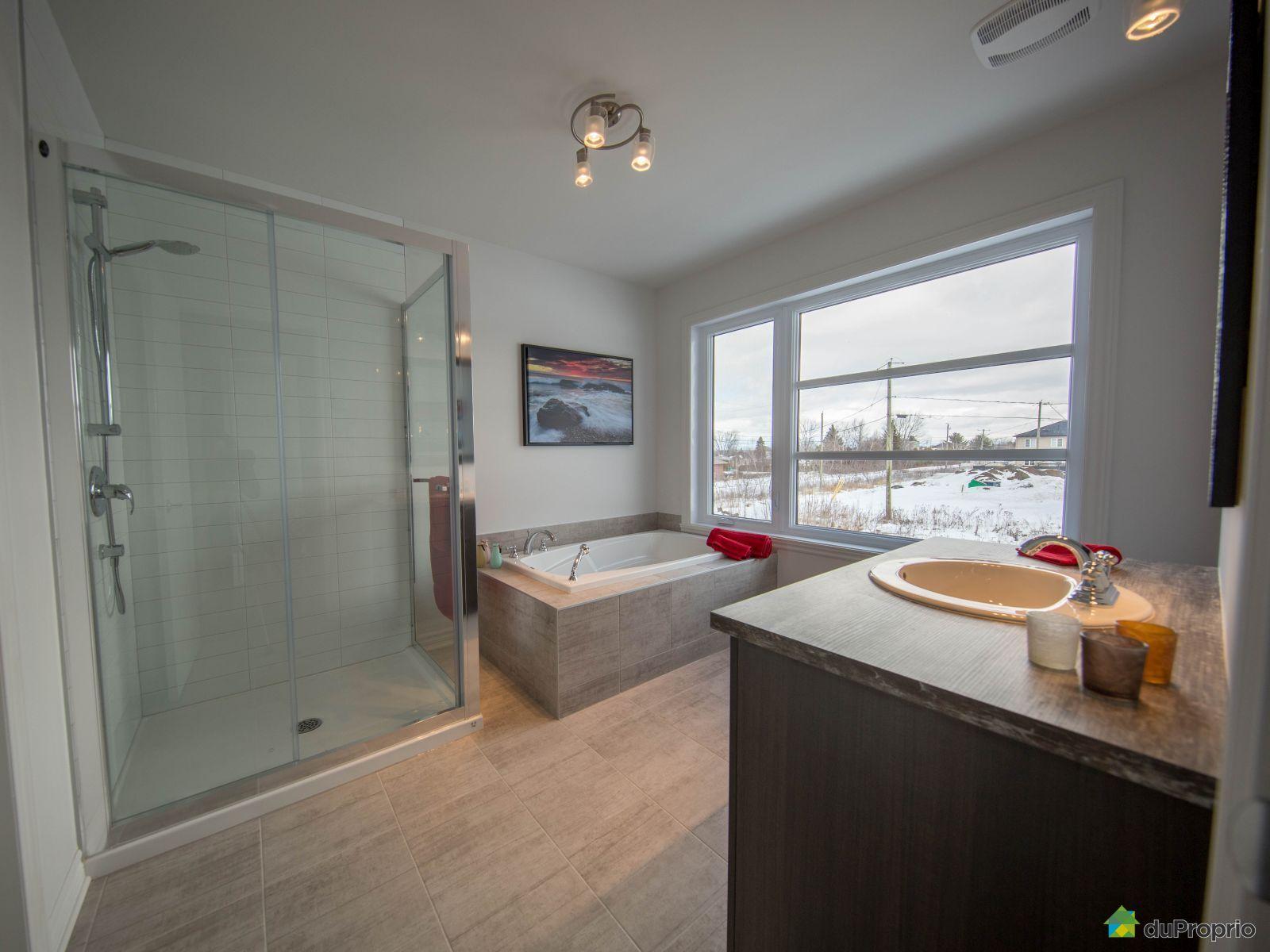 Maison Neuve Vendre Montr Al 853 4e Avenue Mod Le Le