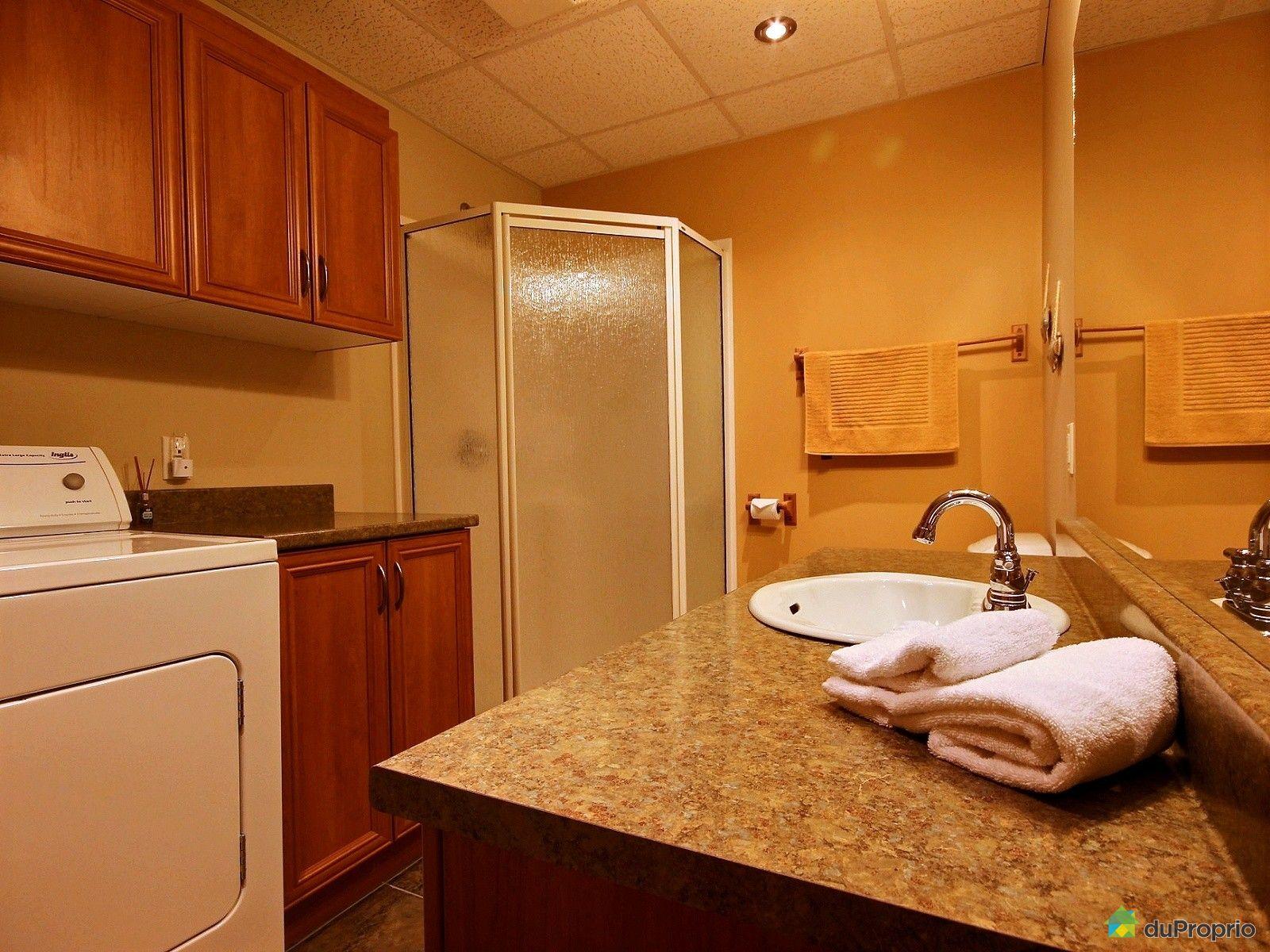 Duplex vendre petite rivi re st fran ois 56 56a chemin for Petite salle de bain sous sol