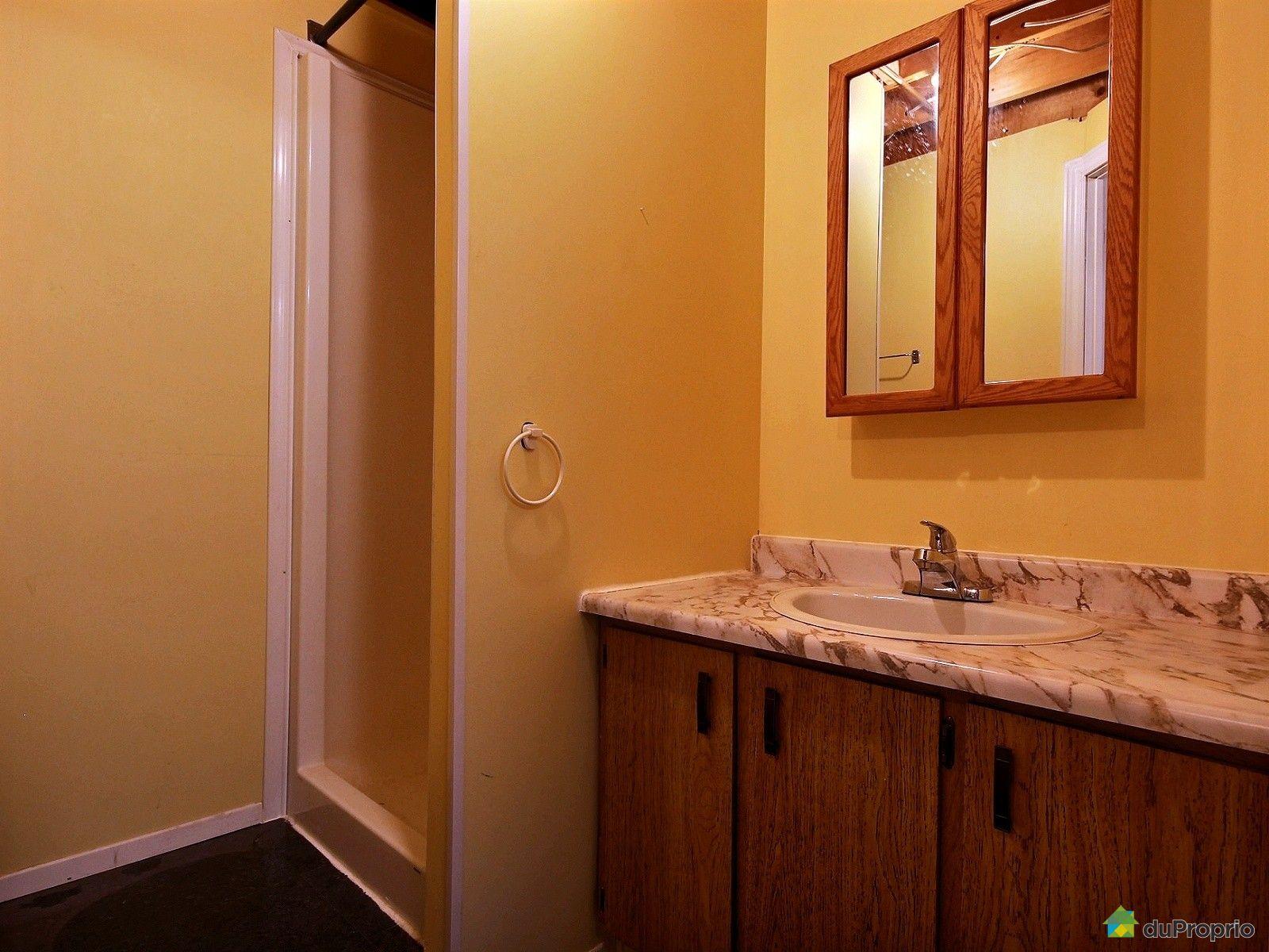 Jumel vendu duberger immobilier qu bec duproprio 540841 for Salle de bain sous sol sans fenetre