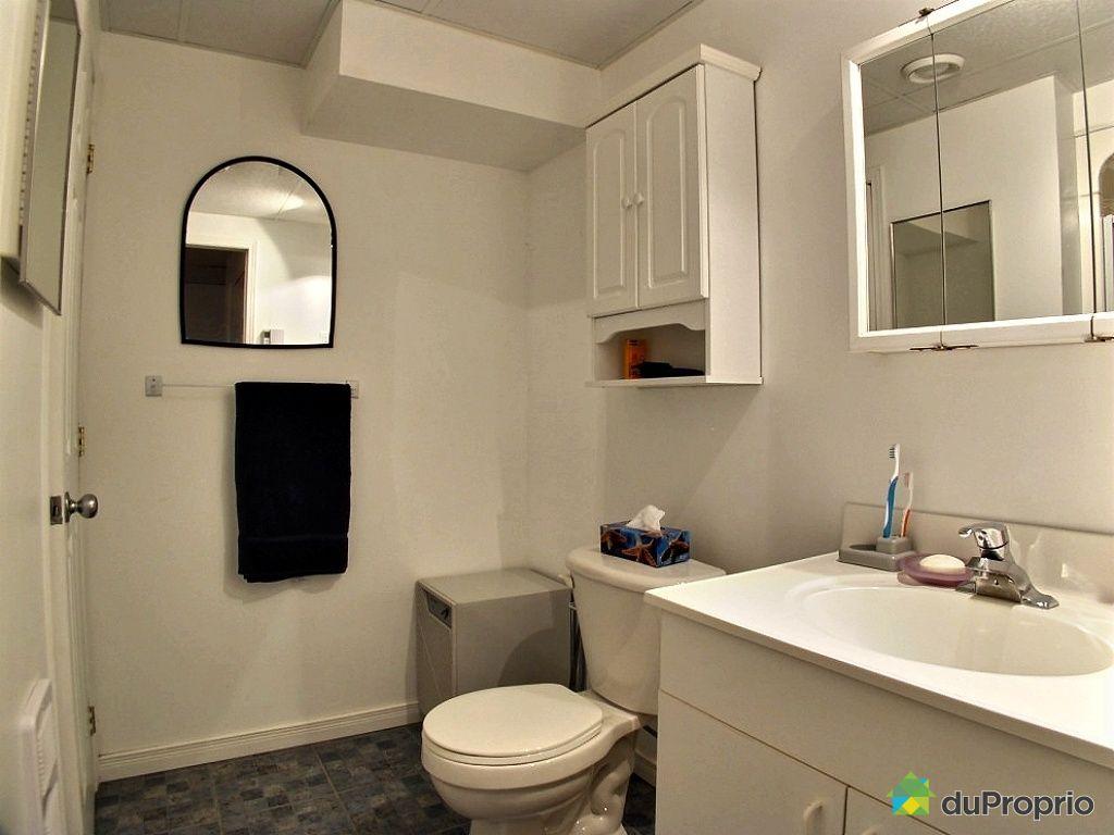 Jumel vendu montr al immobilier qu bec duproprio 462833 for Petite salle de bain sous sol