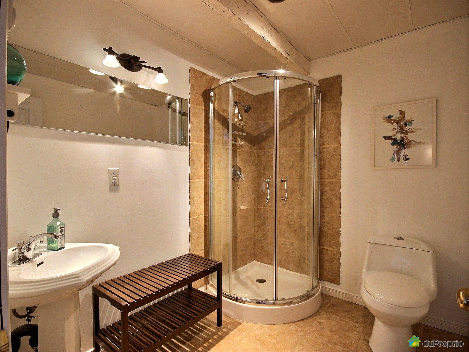 Maison vendre lac st charles 1217 rue de l 39 osier for Prix salle de bain sous sol