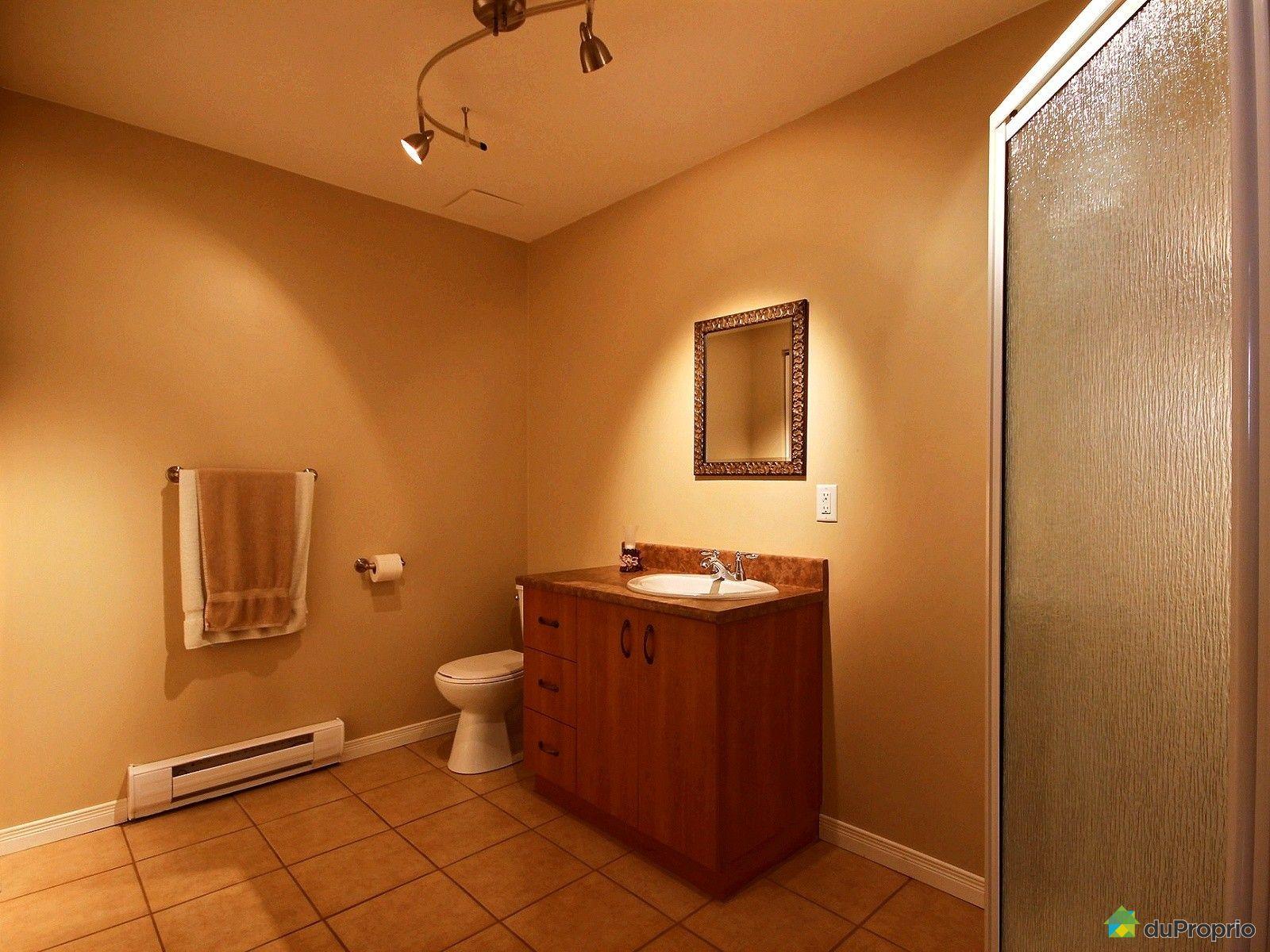 Maison vendre laterri re 1197 rue du boulevard for Prix salle de bain sous sol