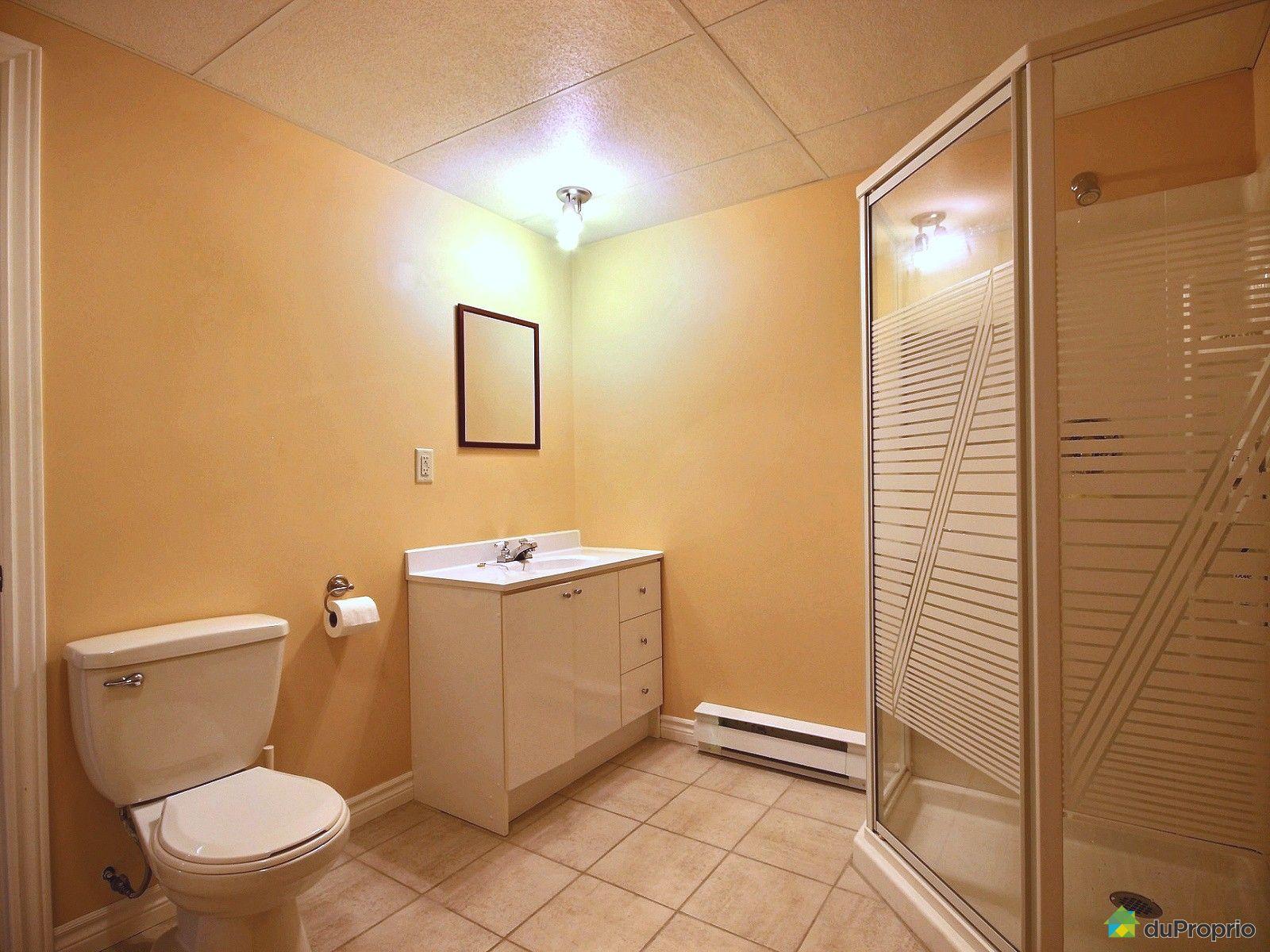Maison vendu drummondville immobilier qu bec duproprio for Salle de bain sous sol sans fenetre