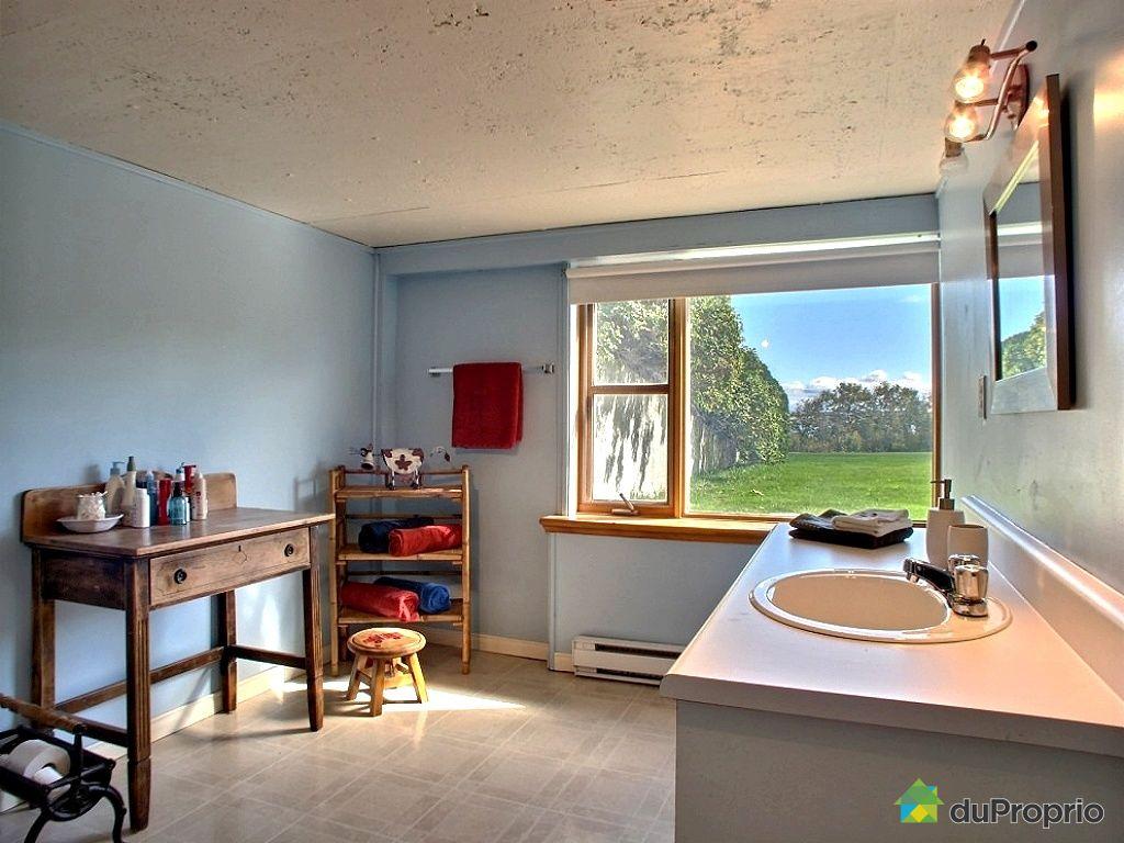 maison vendre ile d 39 orleans st jean 5198 chemin royal immobilier qu bec duproprio 461121. Black Bedroom Furniture Sets. Home Design Ideas