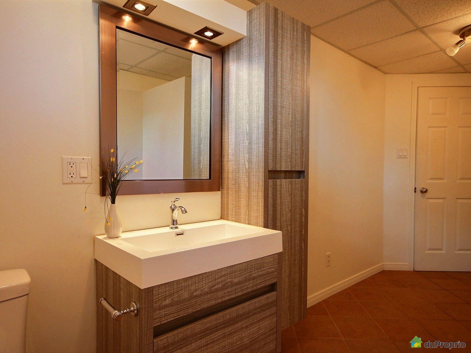 Maison vendre l vis 8797 rue des pommiers immobilier for Levis peinture salle de bain