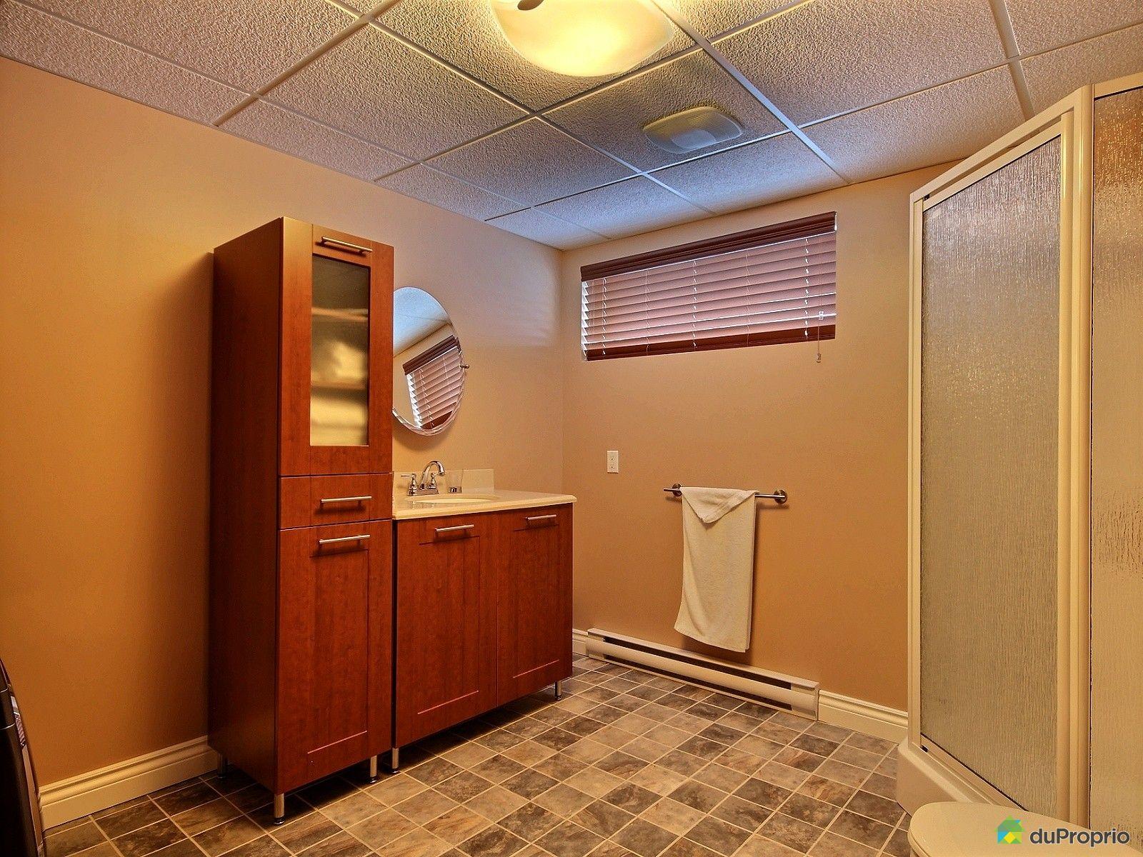 Maison vendre longueuil 1254 rue du petit bois for Petite salle de bain sous sol