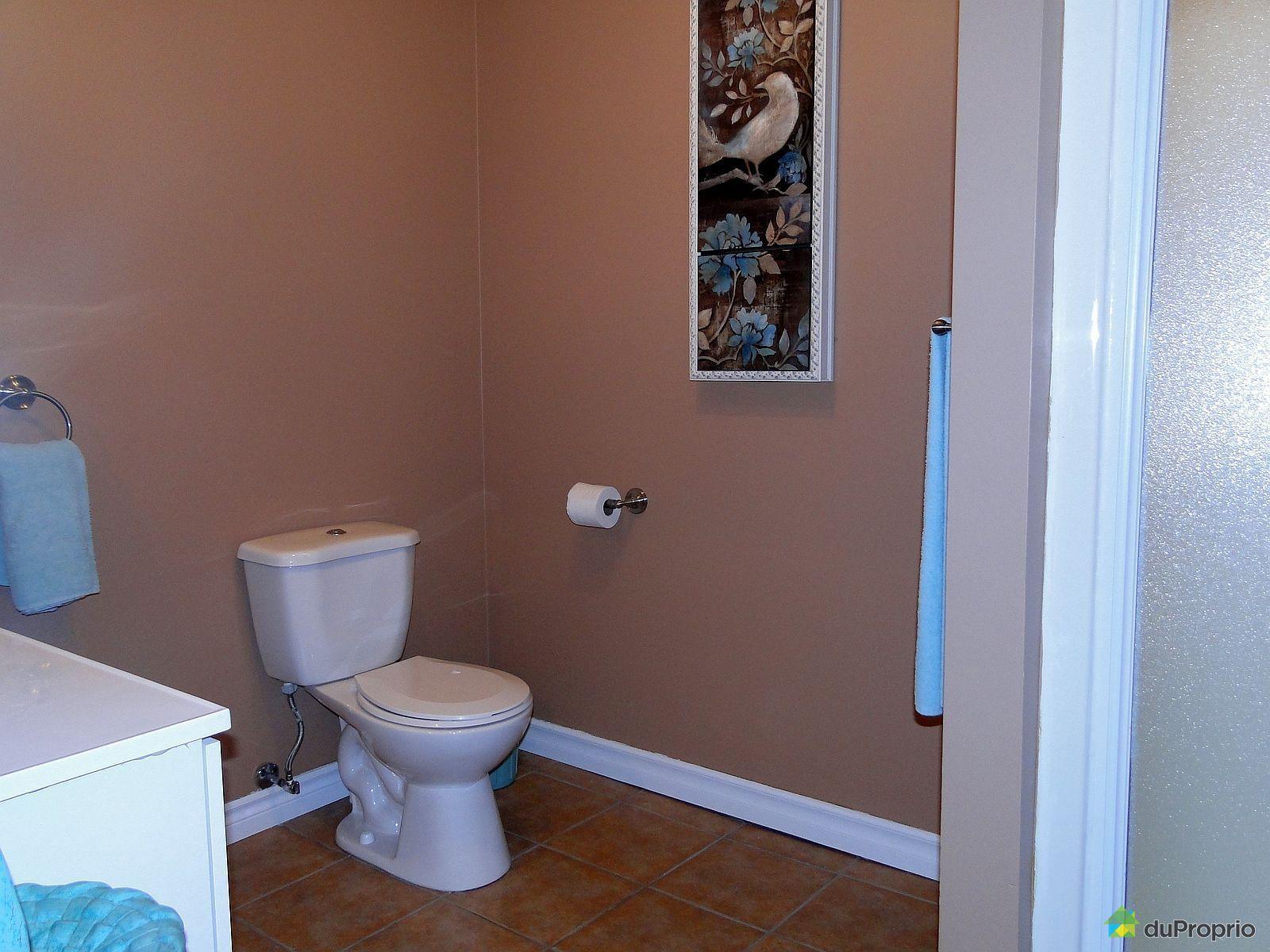 Maison vendre notre dame des pins 3505 rang saint for Salle bain sous sol