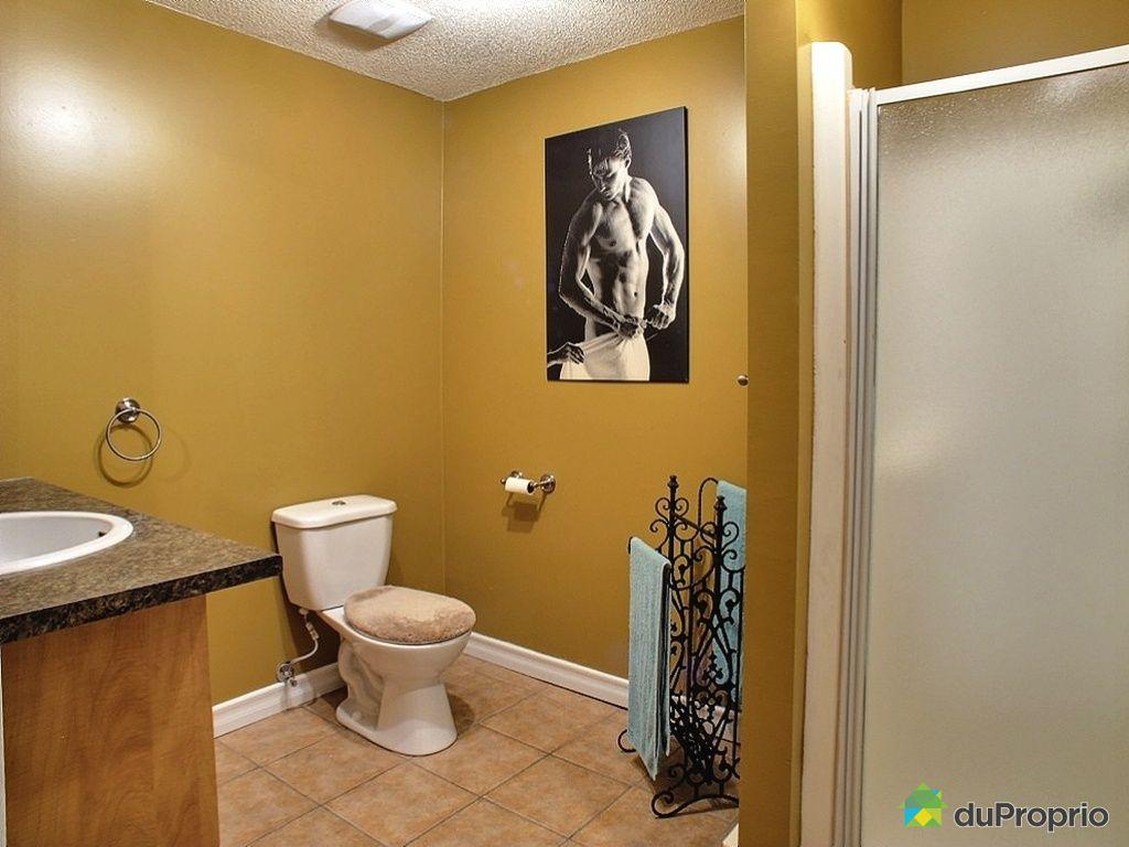 Maison vendre notre dame des pins 3505 rang saint for Prix salle de bain sous sol