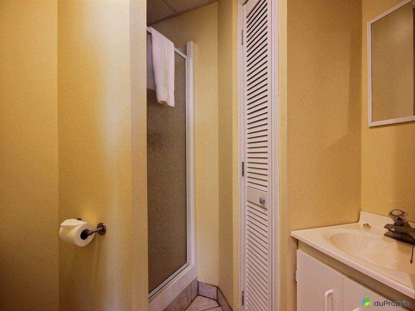 Maison vendre petite rivi re st fran ois 47 chemin des for Petite salle de bain sous sol