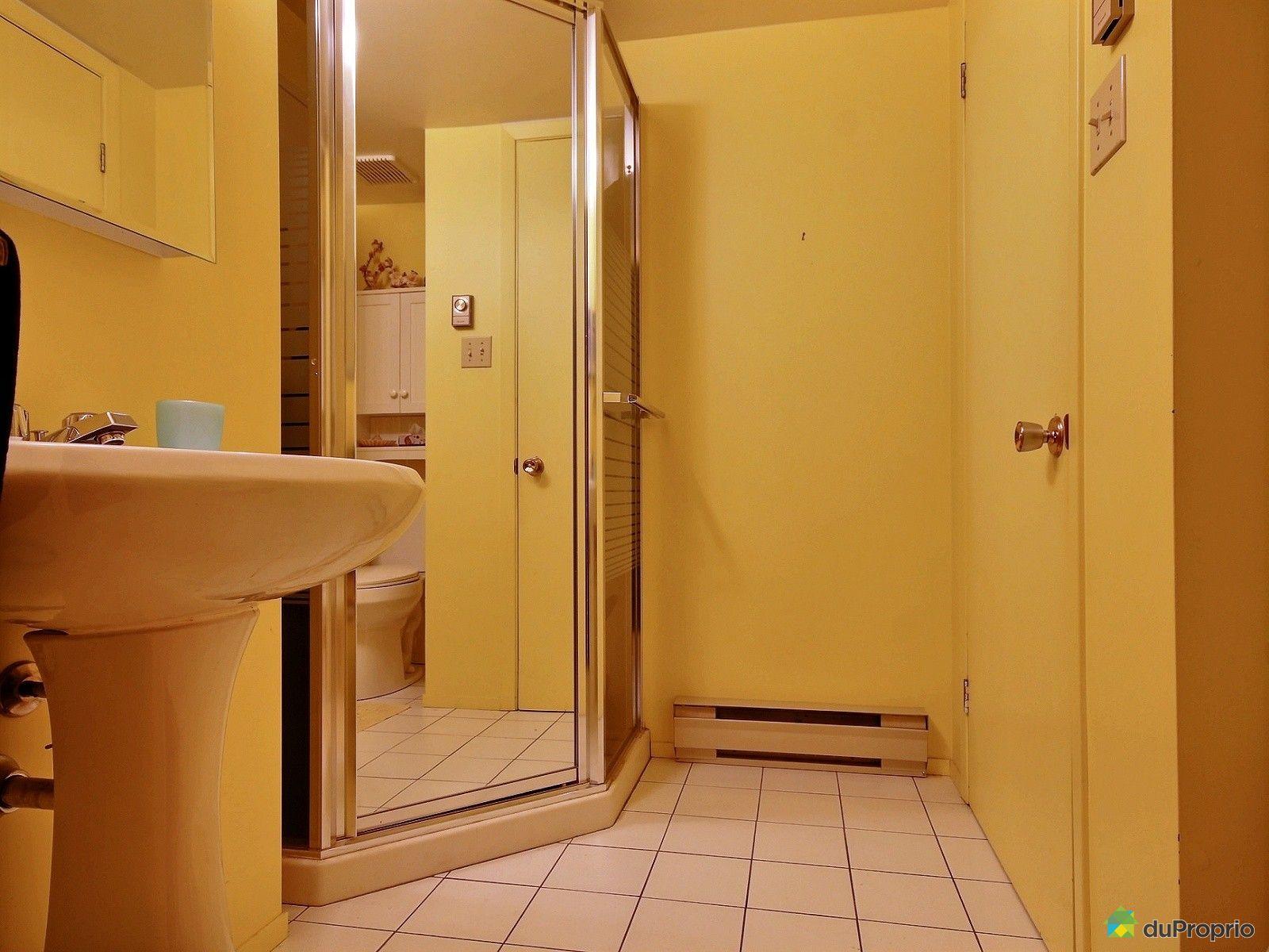 Maison vendu st adolphe d 39 howard immobilier qu bec for Prix salle de bain sous sol