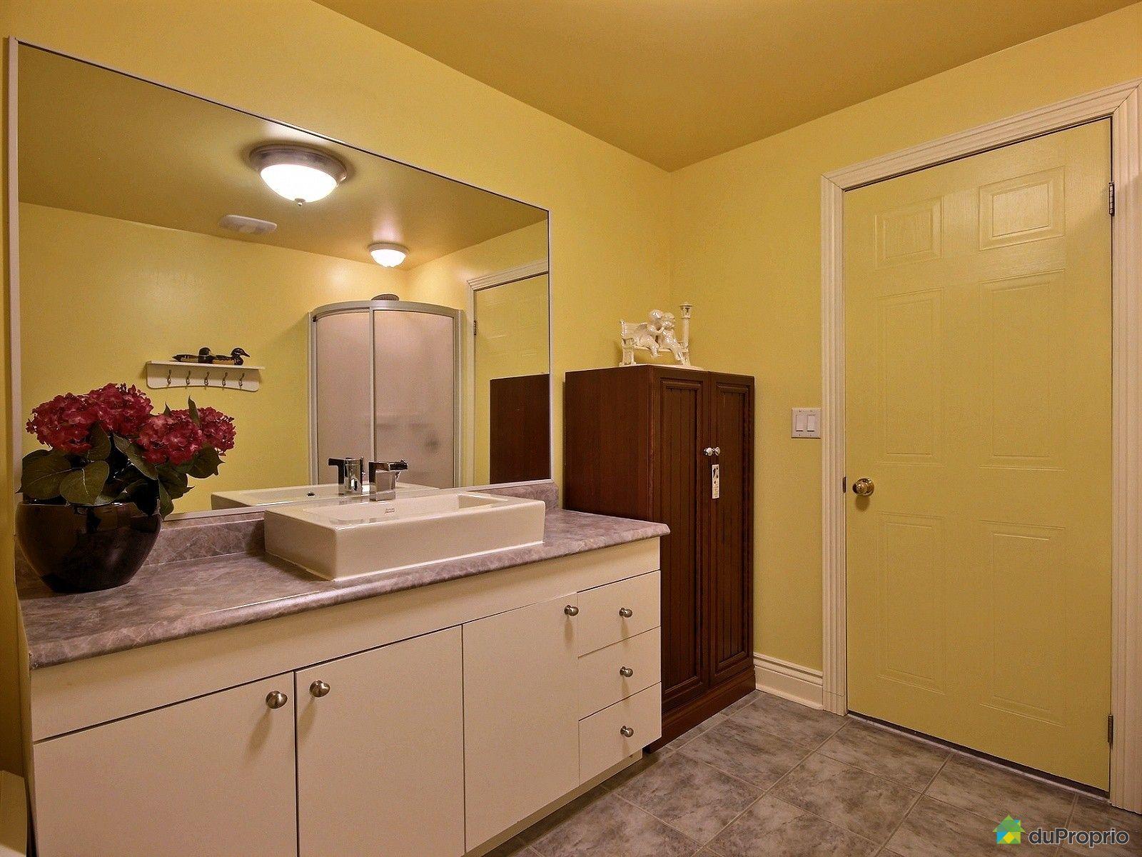 Maison vendre st bruno de montarville 1560 rue du for Prix salle de bain sous sol