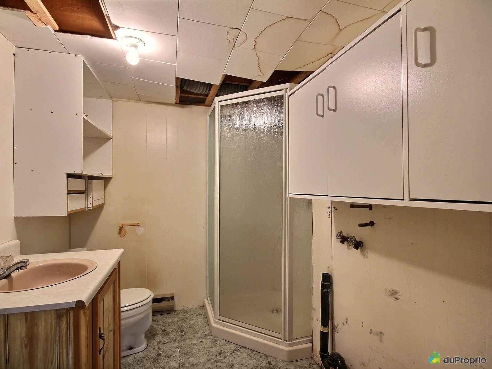 Maison vendre st henri de taillon 175 avenue des for Plomberie salle de bain au sous sol