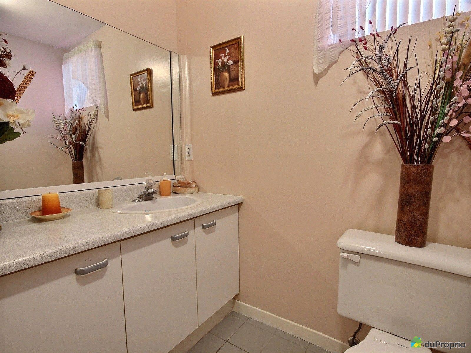 Maison vendre st jean sur richelieu 183 rue grenier - Salle de bain saint brieuc ...