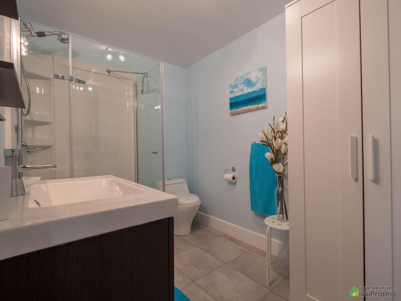 Maison vendre st jean sur richelieu 71 rue denicourt for Prix salle de bain sous sol
