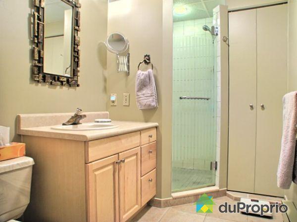 maison vendu st louis de gonzague immobilier qu bec duproprio 234912. Black Bedroom Furniture Sets. Home Design Ideas