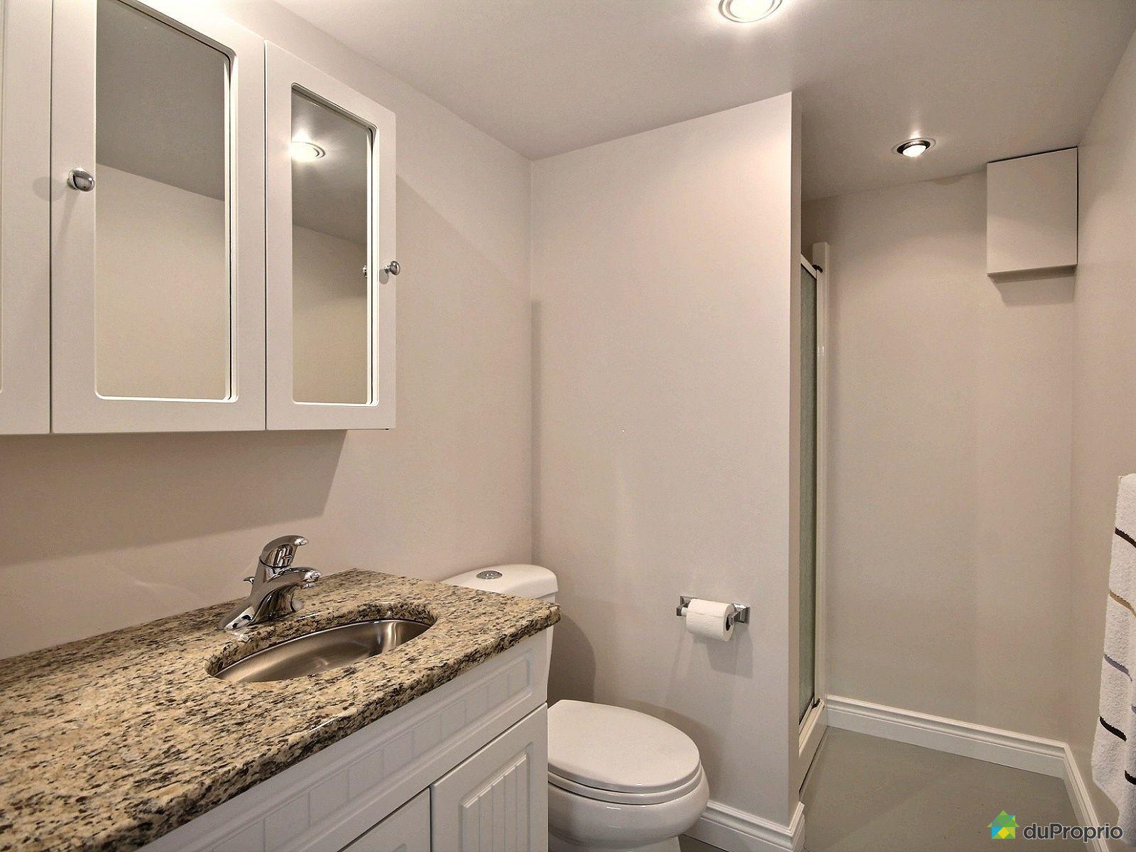 Maison vendre st sebastien de frontenac 491 rue for Salle de bain sous sol sans fenetre